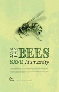 Save the Bees ~ healingbees.org #SavingHumanityIsOurBusiness #SaveTheBees