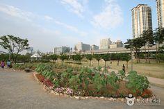 Sangdong Lake Park (...