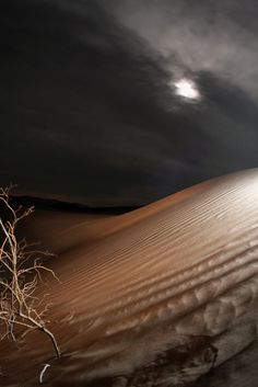 Death Valley | Stovepipe Wells sand dunes, Death Valley National Park
