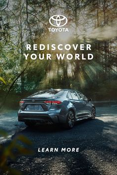 When it comes to getting back to the places and things you've missed most, the Corolla, RAV4 and Highlander are ready when you are. Toyota Corolla, Residency Medical, Funny Horse Pictures, Medical Transcriptionist, Pinterest Advertising, Weird Cars, Crazy Cars, Childhood Ruined, City Illustration