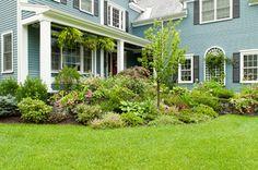 Large planted bed in front yard garden design - traditional - landscape - boston - by Terrascapes Landscape Design
