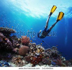 Freediver gliding underwater over vivid coral reef - stock photo