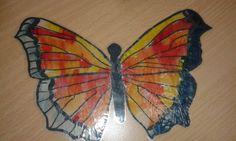 Motýli 5