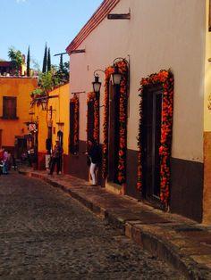 San Miguel de Allende, Guanajuato, Mexico (día de muertos)