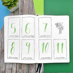 Bullet journal weekly layout,  hand lettering,  flower drawings,  daffodil drawings.    @danis.planner