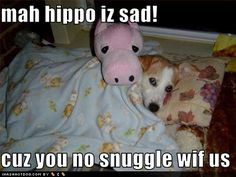 I have a picture of Chigger just like this except he has a fox instead of a hippo :) :)