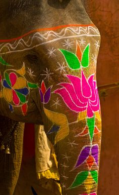 Painted elephants, Amber Fort, Amber (near Jaipur), Rajasthan, India❤️  . photo: Blaine Harrington