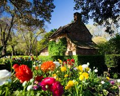Captain Cook's cottage, Melbourne Set in public gardens,