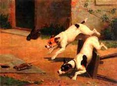 Rat Terrier farm dog