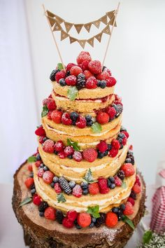 Naked Cake Sponge Layer Fruit Berries Bare Bunting Log Country Rustic Picnic Marquee Wedding https://www.binkynixon.com/
