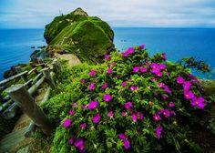 Shakotan Peninsula. Looking for more information aboout Hokkaido? Go Visit Shakotan sightseeing web site. http://www.kanko-shakotan.jp/