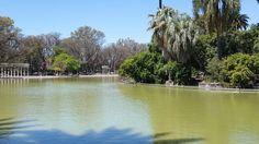 #Promenades #Printemps #Strolls #Spring #Primavera #Rosario #Argentina