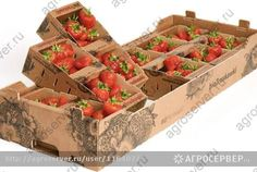 Евро упаковка для ягод / Изображения