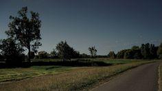 Der Rheinradweg in der Pfalz.