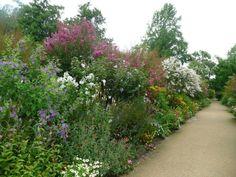 belle haie jardin paradisiaque