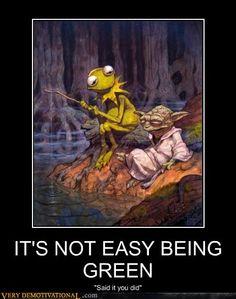 Kermit and Yoda