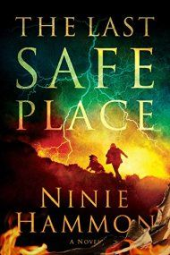 The Last Safe Place by Ninie Hammon ebook deal