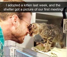 One super cute snap shows an owner meeting his kitten at the shelter for the first time...