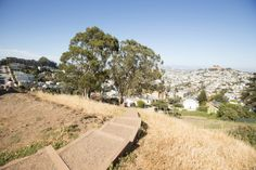 Rope Swings in San Francisco?? A Guide to San Francisco's Lesser-Known Parks