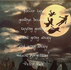 Peter Pan - Disney: I know I already pinned this, but I love Peter Pan. :)