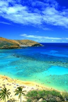 ✯ Hawaii Beach I want to be here right now in that nice clear warm water.  That's going to be my next cruise.