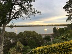 Macleay Island Beautiful Sunrise, Bird Watching, Kayaking, Swimming, River, Island, Sunset, Beach, Outdoor