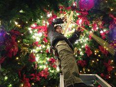 クリスマスツリー design Toshihide Okamoto   Among the Christmas tree is like a kaleidoscope. MACHINO-hanayasan www.machinohana.com tumblr (Toshihide Okamoto) toshihide-okamoto... Facebook www.facebook.com/... Facebook www.facebook.com/... instagram instagram.com/...