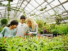 Female botanist with young students in greenhouse