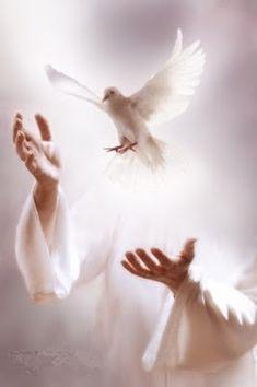 Estudios Bíblicos María Daniela Másmela Albarino: El Espíritu Santo y Cristo