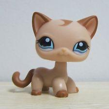 Hasbro Littlest Pet Shop Coleção Lps Solto Brinquedos Tan Cabelo Curto Gatinho Gato Raro