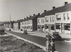 [IN]Beeld: Van Corneliuslaan naar Corneliuspark Bron: Rijckheyt.nl   Corneliuslaan1956