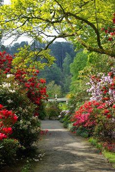 Bodnant Gardens, North Wales, UK