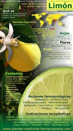 Propiedades del limón. usos medicinales