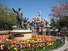 Walt Disney World Resort Hotels | PhotoPass+ at Walt Disney World and Disneyland Resorts