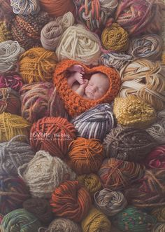 You knit me together in my Mother's womb.....wildflowers photography on Reverie blog. So creative!