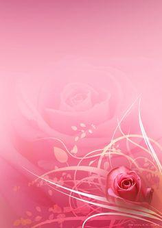 Pink Rose Paper.