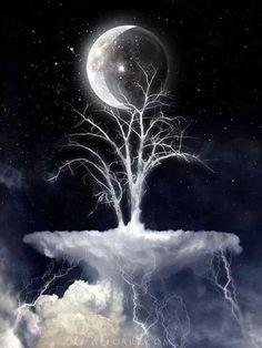 Cold Crescent Moon