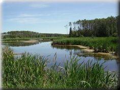 Cooking Lake - Blackfoot Grazing Wildlife Provincial Recreation Area Alberta Can
