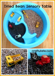 Dried Bean Sensory Table from Craftulate