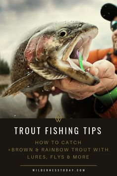 Check out our monster trout fishing guide and get the top tips to haul in your catch of both Rainbow and Brown Trout. Check out our monster trout fishing guide and get the top tips to haul in your catch of both Rainbow and Brown Trout. Trout Fishing Tips, Walleye Fishing, Fishing Guide, Sea Fishing, Fishing Bait, Fishing Knots, Fishing 101, Fishing Tricks, Fishing Reels