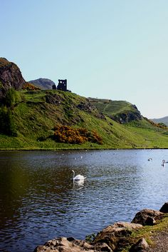 St Margaret's Loch, Arthur's Seat, Edinburgh. #thisisedinburgh