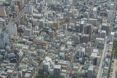 WHAT TO DO IN TOKYO AND KYOTO