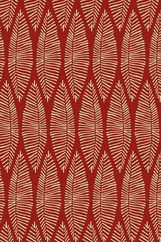 organic lines collection | pattern | © wagner campelo