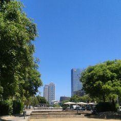 """Towards the beach #hotelars #mapfretower #barcelona #bluesky #tree #sun"""