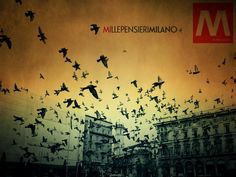 M - Milano