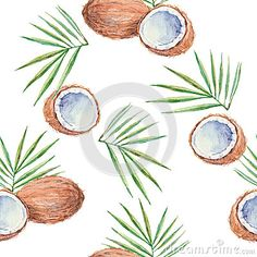 Seamless pattern with coconuts, painted in watercolor. Vector b