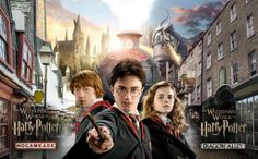 The Wizarding World of Harry Potter - Diagon Alley opens this Summer 2014!  #HarryPotter #WizardingWorld #DiagonAlley