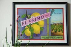 Vintage fruit crate labels for a 1920s kitchen—some of the cheapest charming artwork you can find.