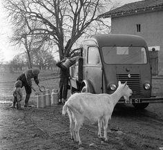 Renault 1400 kg (c.1950) - Les belles années des camionnettes.