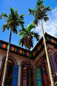 Colorful Little India, Singapore
